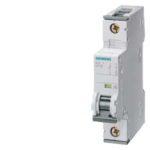 Interruptor automático SENTRON-5SY6104-7-SIEMENS